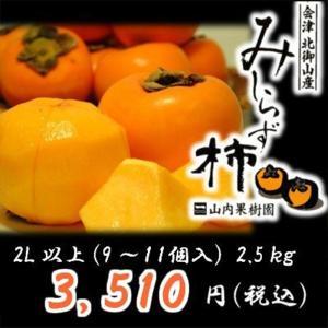 会津みしらず柿2L以上(9〜11個入り)2.5kg|yamautifruit