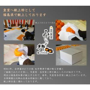会津みしらず柿2L以上(9〜11個入り)2.5kg|yamautifruit|05