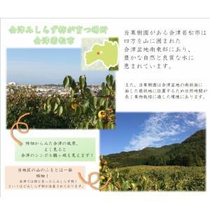 会津みしらず柿2L以上(9〜11個入り)2.5kg|yamautifruit|10