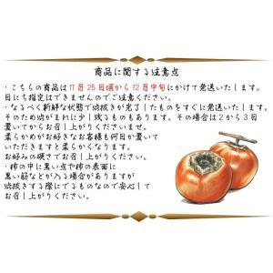 会津みしらず柿 3L以上(9〜11個入り)3kg福島県会津若松市北御山産|yamautifruit|11