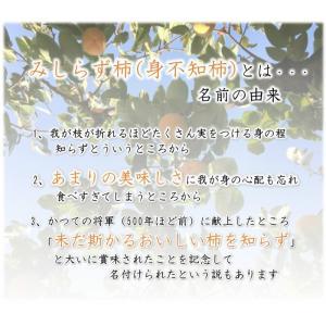 会津みしらず柿 3L以上(9〜11個入り)3kg福島県会津若松市北御山産|yamautifruit|03