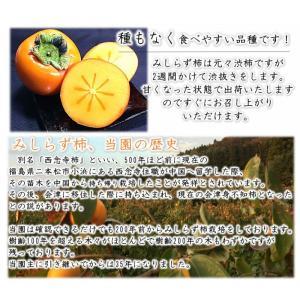 会津みしらず柿 3L以上(9〜11個入り)3kg福島県会津若松市北御山産|yamautifruit|05
