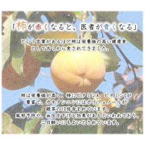 会津みしらず柿 3L以上(9〜11個入り)3kg福島県会津若松市北御山産|yamautifruit|07
