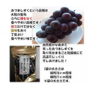 枝付き干し葡萄あづましずく 100g×1パック福島県会津産 |yamautifruit|03