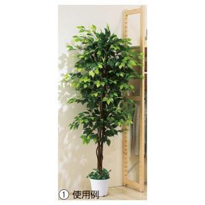 人工観葉植物 ベンジャミン 立ち木 グリーン (H180cm) 1台