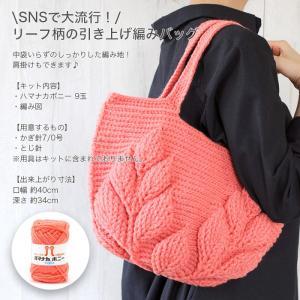 編み物 キット / Hamanaka(ハマナカ) ハマナカボニーで編むリーフ柄の引き上げ編みバッグキット|yanagi-ya|02