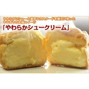東北・関東限定 送料無料10個セット カスタードシュークリーム|yanagiyakashi