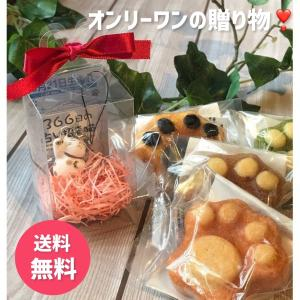 誕生日プレゼント 招き猫 マドレーヌ バースデーBOX|yanakado