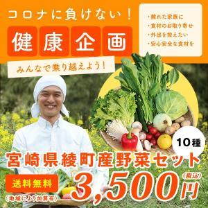 綾町野菜セット 1回便 10種類 送料無料|yao800