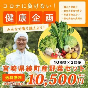 綾町野菜セット 3回便 10種類 毎週または隔週お届け 送料無料|yao800