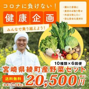 綾町野菜セット 6回便 10種類 毎週または隔週お届け 送料無料|yao800
