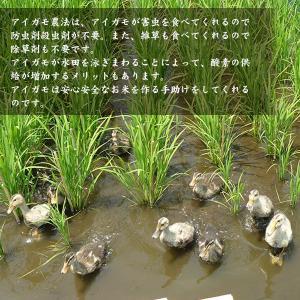 宮崎県産合鴨米(玄米)【ヒノヒカリ10kg】【送料無料】 yao800 02
