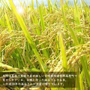 宮崎県産合鴨米(玄米)【ヒノヒカリ10kg】【送料無料】 yao800 03