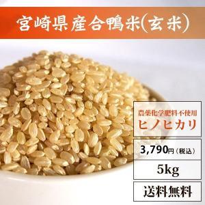宮崎県産合鴨米(玄米)【ヒノヒカリ5kg】【送料無料】|yao800
