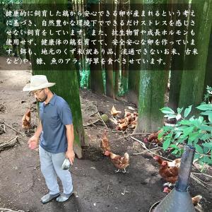 【有精卵】近藤自然農園の卵【10個入】|yao800|03