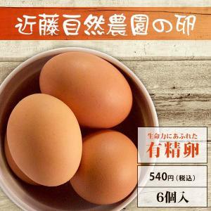 【有精卵】近藤自然農園の卵【6個入】|yao800