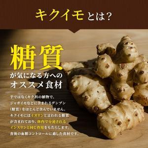 菊いも粉末【100g×5個セット】宮崎県産キクイモ100%|yao800|03