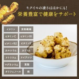 菊いも粉末【100g×5個セット】宮崎県産キクイモ100%|yao800|05