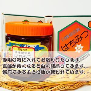 国産ハチミツ【600g*2本】 宮崎県産純粋ハチミツ 30セット限定!お中元などにも!|yao800|02