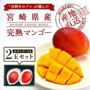 宮崎完熟マンゴー 2個セット 2Lサイズ 送料無料 ギフト プレゼント 贈答品 母の日、父の日|yao800