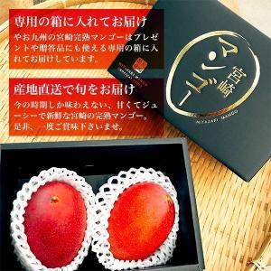 宮崎完熟マンゴー 2個セット 3Lサイズ 送料無料 ギフト プレゼント 贈答品 母の日、父の日 yao800 03