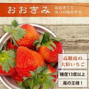 【予約スタート!12月下旬より発送予定】【イチゴの王様】宮崎県産おおきみ yao800 02