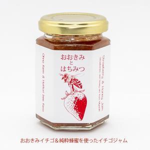 【おおきみとはちみつ】宮崎県産イチゴジャム 1本 ギフト プレゼント 贈答品 御中元 yao800