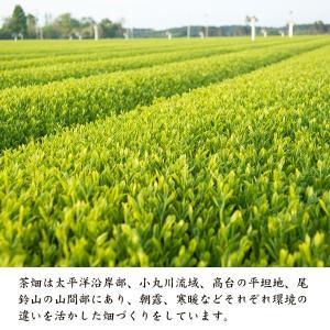 お茶農家「大塚園」のプレミアム緑茶【3パックx15包入】|yao800|03