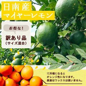 訳あり国産レモン 2kg