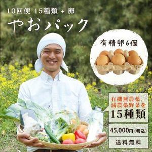 野菜セット やおパック 10回便 15種類と卵 毎週または隔週お届け 送料無料|yao800