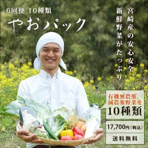 野菜セット やおパック 6回便 10種類 月1回お届け 送料無料|yao800