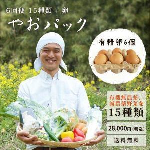 野菜セット やおパック 6回便 15種類と卵 月1回お届け 送料無料|yao800