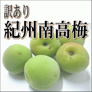 6月中旬より順次発送させていただきます。 ◆梅酒用か梅干し用(完熟)か選択してください  ◆商品の重...