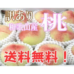 【送料無料】訳あり・ご家庭用/和歌山産 おいしい桃 11〜1...