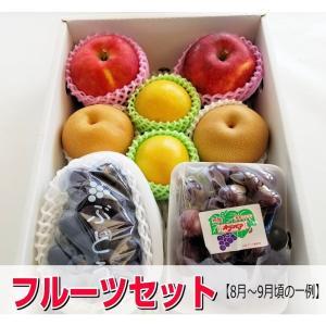送料無料【フルーツ福袋】旬のフルーツギフトセット/うれしい福袋|yaoya-kisyu|02