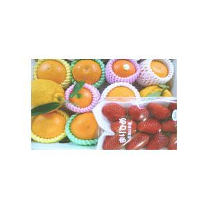 送料無料【フルーツ福袋】旬のフルーツギフトセット/うれしい福袋|yaoya-kisyu|04