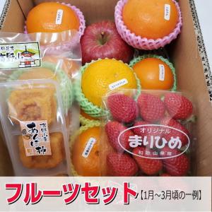 ・旬のフルーツ詰め合わせ! その時の一番美味しいものを選りすぐりお届けします。 すべて国産(和歌山産...