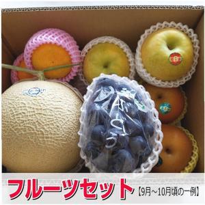 ・お中元・ギフトにも最適 ・その時期の美味しいフルーツセットを厳選してお届けします。 季節によって内...