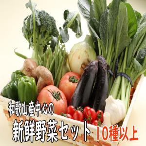 和歌山から旬の野菜を詰め合わせた(野菜セット)10種以上/送料無料|yaoya-kisyu