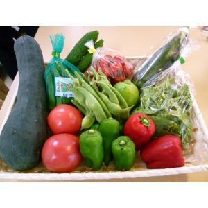 和歌山から旬の野菜を詰め合わせた(野菜セット)10種以上/送料無料|yaoya-kisyu|03