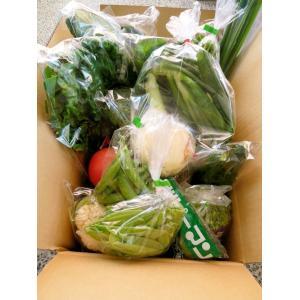 和歌山から旬の野菜を詰め合わせた(野菜セット)10種以上/送料無料|yaoya-kisyu|04