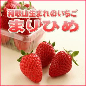 【送料無料】和歌山生まれの新品種イチゴ≪まりひめ≫4パック