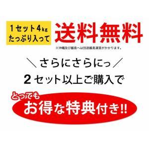 安納芋 4kg入り 送料無料 2セット以上のご購入で、新鮮野菜のおまけ 焼き芋 に最適な 蜜芋|yaoyamato|02