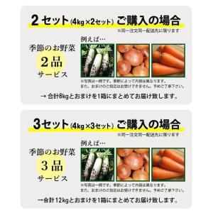 安納芋 4kg入り 送料無料 2セット以上のご購入で、新鮮野菜のおまけ 焼き芋 に最適な 蜜芋 yaoyamato 03