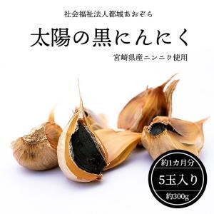 黒にんにく 宮崎県産・国産 太陽の黒にんにく(玉)5個入り(300g)約1カ月分 送料無料 無添加