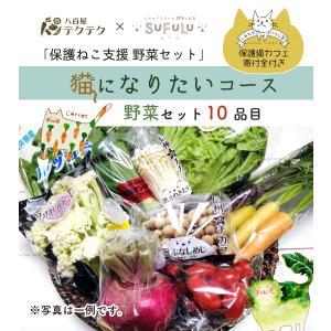 保護ねこ支援セット 猫になりたいコース 野菜10品目+ねこグッズ 新鮮 直送 クール便 本州・四国は送料無料 商品説明書同封|yaoyatekuteku