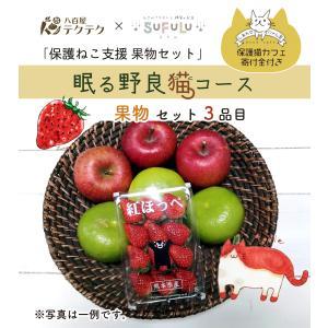 保護ねこ支援セット 眠る野良猫コース 果物3品目+ねこグッズ 新鮮 クール便 本州・四国は送料無料 商品説明書同封|yaoyatekuteku