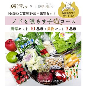 保護ねこ支援セット ノドを鳴らす子猫コース 野菜10品目+果物3品目+ねこグッズ 新鮮 直送 クール便 本州・四国は送料無料 商品説明書同封|yaoyatekuteku