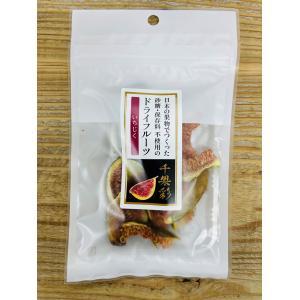 ブランズウィック 砂糖・保存料不使用の国産ドライフルーツ千果彩 |yarnhouse