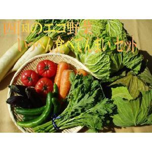 四国のエコ野菜いっぺん食べてんまい 7種類セット